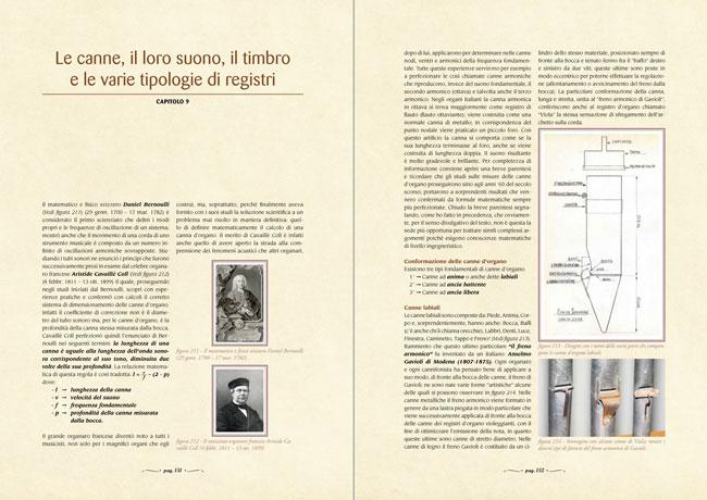 L'arte organaria - Le canne, il loro suono, il timbro e le varie tipologie di registri - capitolo 9